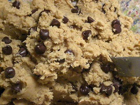 dough with chocolate chips